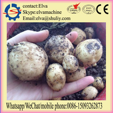 Farm machine 3 rows potato planter and potato seeder