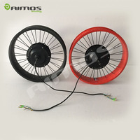 Fat tire electric bike 48v 1000w rear wheel motor conversion kit