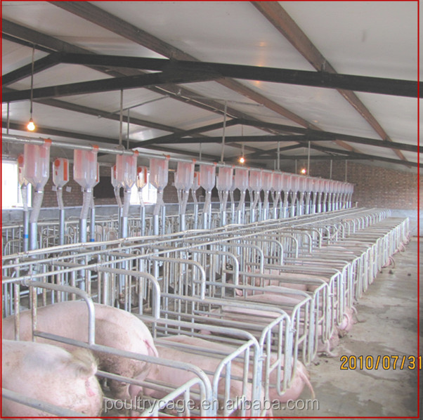 Hot Sale Farrowing Crate/Pig Fattening Pen/Pig Limited Pen