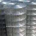 Galvanized Welded Wire Mesh (Good Quality and the best price )