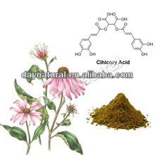 Raw Material Of Flu Cold Medicine Echinacea Flower Extract--Herbal Medicine