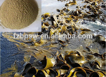 2016 Natural Feed Additive 100% Pure Dried Kelp/Laminaria/ Kombu Powder/eel feed/chicken feed