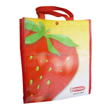 Wenzhou manufacture polypropylene nonwoven shopping bag with glossy laminated