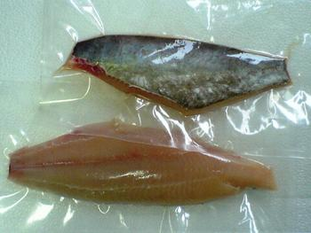 Marine Catfish fillet