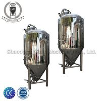 Grainbrew 2.5 BBL Small Size Craft Beer Fermentation System