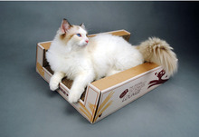 Made in China recyclable new design cardboard scracher paper cat bed