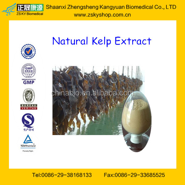 Hot Sale Natural Kelp Extract / Laminaria Japonica Extract Fucoidan 10%-98%