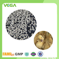 Animal Health Care Source For Coated Colistin Sulfate 20% Feed Additive