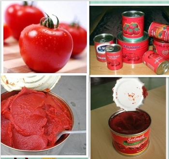 Factory price canned tomato paste