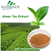 green tea leaves extract polyphenol green tea extract water soluble tea polyphenol