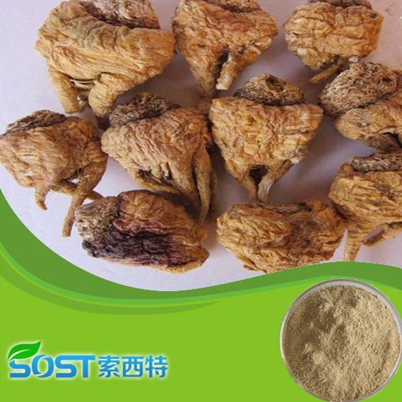 medicine for long time sex for maca extract powder free sample