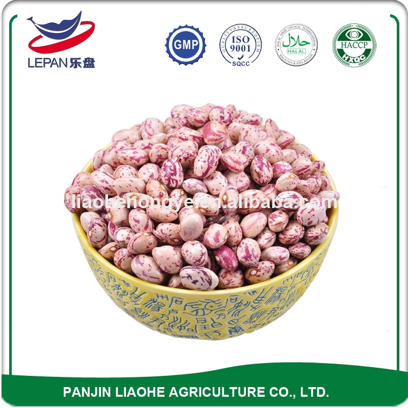 Non-gmo Large White Wholesale Pinto Bean Lentil Specifications Types of Seeds Pulses Red and White Speckled Kidney Beans