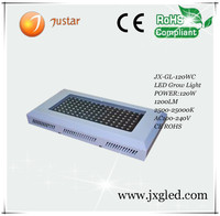 300w led panel customized growing light