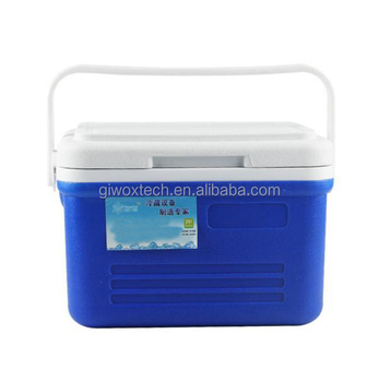 2017 New Mini 6L Portable Plastic Cooler Box For Camping Use