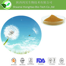 100% Natural Dandelion Root Extract, Dandelion Extract, Dandelion herb Extract powder 4%-10%