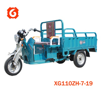 XINGE 3 wheel motor cargo van tricycle trike vehicle