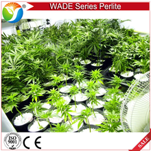 Good quality expanded perlite widely use in garden for seed raising