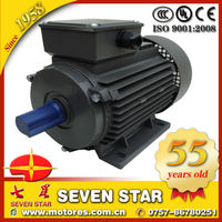 Y2 series three phase 100 hp electric motor
