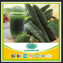 100% Natural organic cucumber powder and cucumber juice concentrate