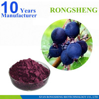 High quality pure natural acai berry extract Manufacturers