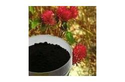 natural red clover powder extract 8.0% total isoflavone