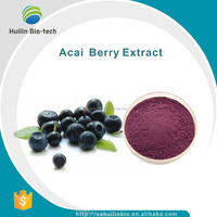 Acai Berry P.E./Acai Berry Fruit Extract powder
