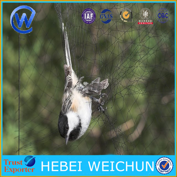 110 d nylon mist bird net