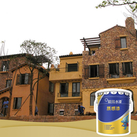 Spray application mineral stone paint