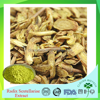 Pharmaceutical grade ISO certificated Chinese Herb medicine Baical Skullcap root extract