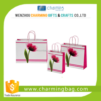 different types of laminated paper shopping bag
