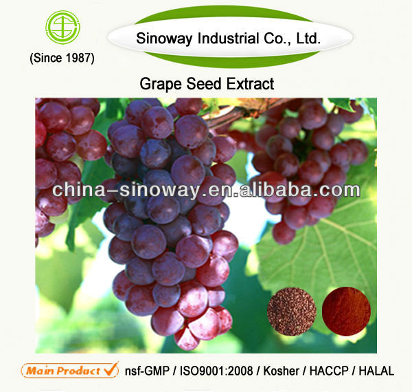 Grape Seed Extract Standard Proanthocyanidin