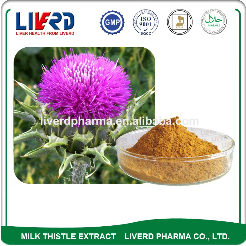 Herb Medicine High Quality Silimarin for Liver