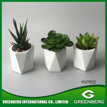 New inventions geometric shape mini pot with succulent planter