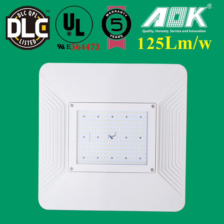 LED Light Gas Station 200w LED Module for Canopy Lighting