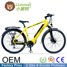 Hot Sell motorbike electric bicycle