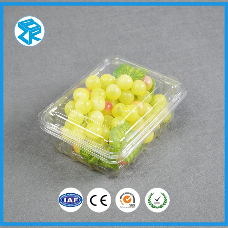 SZ2-500A dry fruit packaging box plastic compartment food case salad container