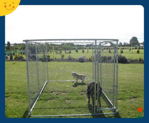 welded mesh or chain link mesh type large outdoor dog run kennel