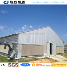 low cost chiaken cage layer poultry chiaken house