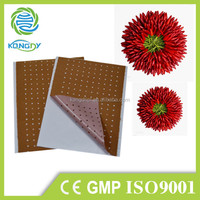 2016 New Product and Hot Medical Capsicum Plaster medical adhesive plaster