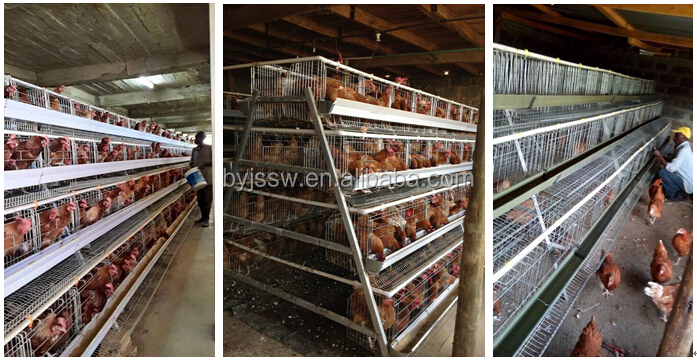 100% Response Rate Cheap Industrial Chicken Coop