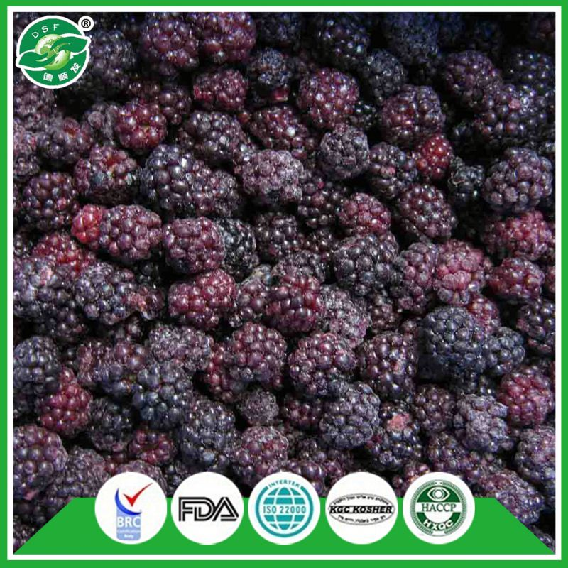 Pass BRC Bulk Price of Chinese Exporting IQF Blackberry