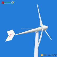 10KW wind driven generator/permanent magnet generator/10kw wind driven mill