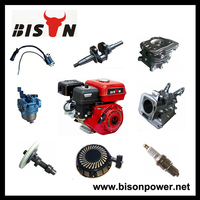 BISON CHINA Taizhou Wholesale engine piston, engine valve, and all kinds of cylinder gasoline engine spare parts for sale