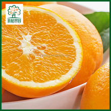 Orange Fruit Exporter Valencia Orange