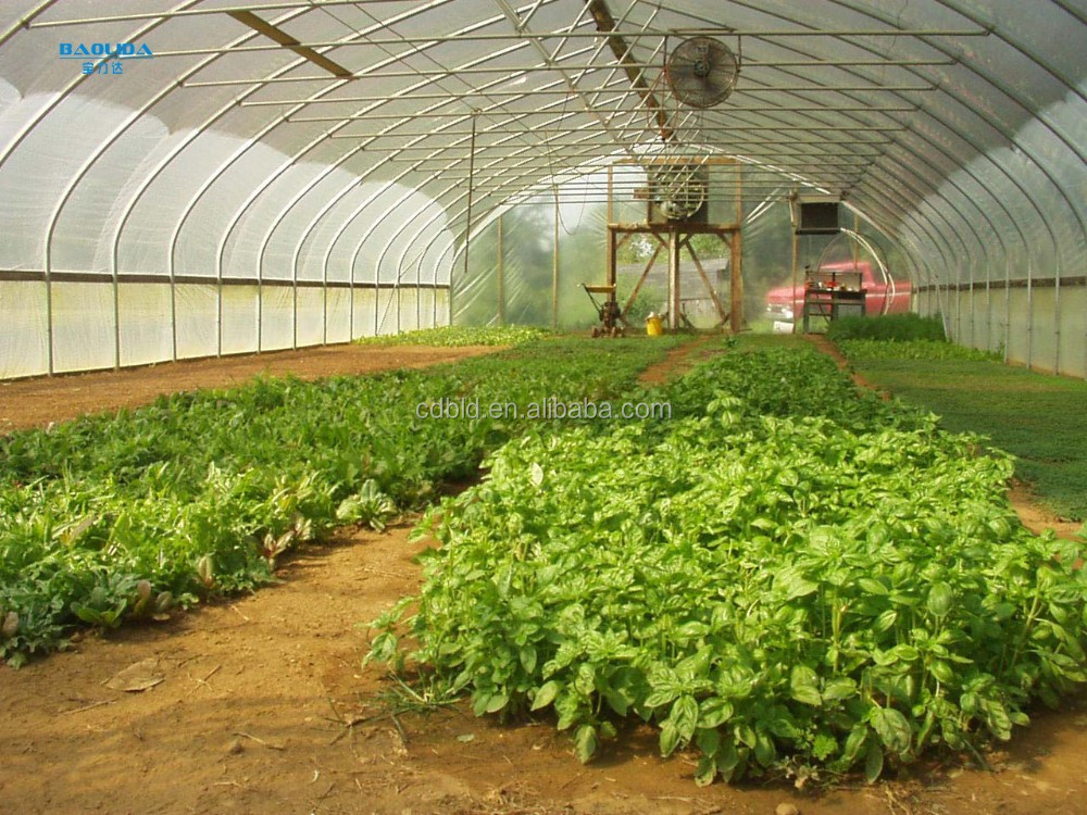 Winter Greenhouse For Sale/Portable And Inflatable Greenhouse Can Be Used