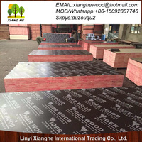 TEGO plywood, 18mm concrete formwork plywood, construction plywood sheet