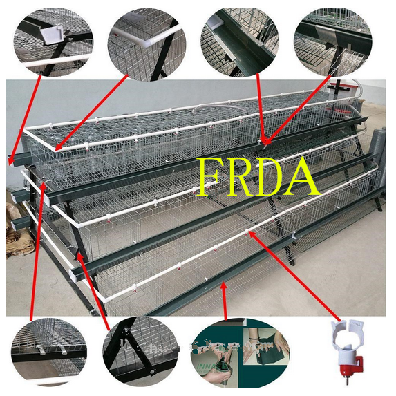 FRDA a type 3 tiers layer chicken cage 100 for sale