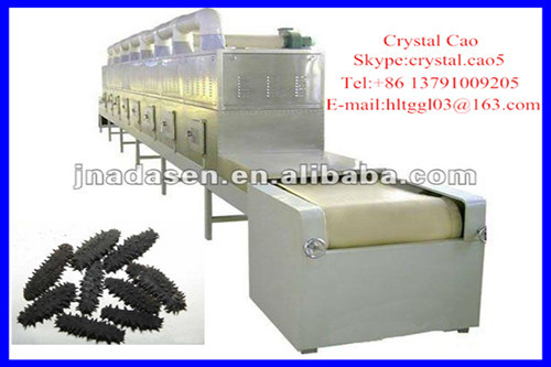 microwave dryer /industril tunnel Microwave trepang drying/sterilizing oven