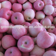 singapore mangoes importer fresh apple fruit for sale