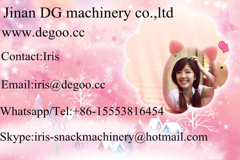 Continuous Pet Treats food/ Fish Feed snack production line/making equipment China supplier Jinan DG Shandong